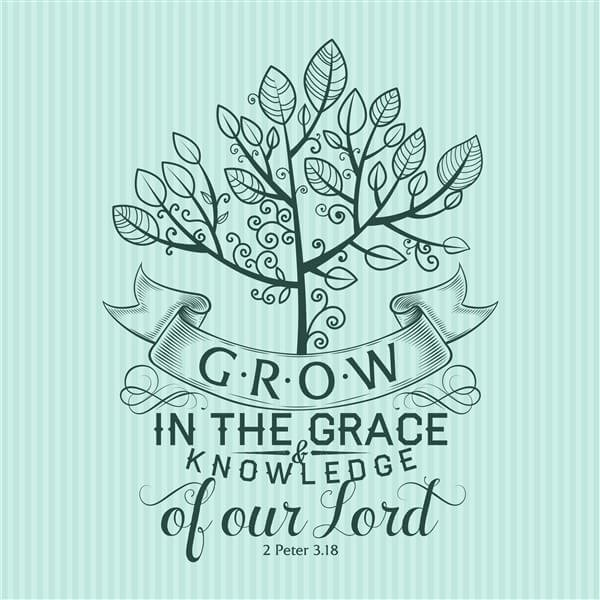 Grow in the grace and knowledge of your lord
